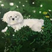 paint-your-pet-10.jpg