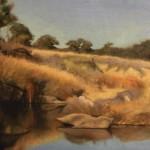 Australian-Landscape-Artist-Sally-Ryan.jpg