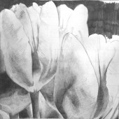 Essential-Drawing-Skills-Featured-Course-Art-Works-05.jpg