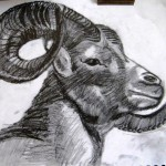 Essential-Drawing-Skills-Featured-Course-Art-Works-11.jpg