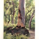 Plein-Air-Landscape-Painting-Class-Sydney-Art-School-12.jpg
