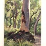 Plein-Air-Landscape-Painting-Class-Sydney-Art-School-12.jpg