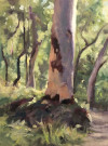 Plein-Air-Landscape-Painting-Class-Sydney-Art-School-13.jpg