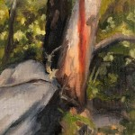 Plein-Air-Landscape-Painting-Class-Sydney-Art-School-14.jpg