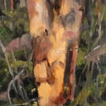 Plein-Air-Landscape-Painting-Class-Sydney-Art-School-16.jpg