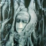 budda-Artist-Anita-Chisholm.jpg