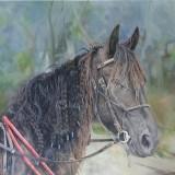 portrait-and-equine-artist-kristin-hardiman-2016-1.jpg