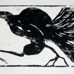 printmaking-bush_turkey-web.jpg